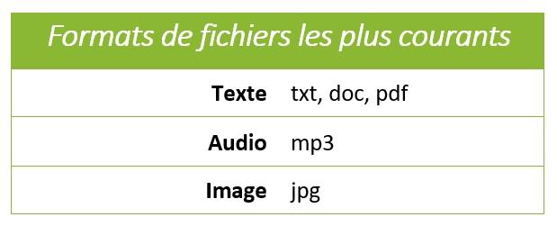 Formats de fichiers les plus courants